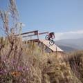 Bridge on Bamm Bamm at Trailside Park.- The Best Mountain Biking in Park City, Utah