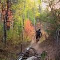 Riding on the Wardsworth Creek Trail.- Salt Lake City's 17 Best Mountain Bike Rides