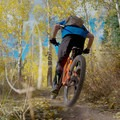 Aspen grove at the top.- 6 Days of Adventure in Utah's Wasatch Mountains