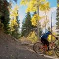 Dog Lake Mountain: Descending through Big Water/Little Water trail junction.- Salt Lake City's 17 Best Mountain Bike Rides
