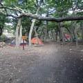 Laguna Capri campsite.- Laguna de los Tres