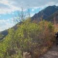 Riding the Mill Creek Pipeline Mountain Bike Trail.- Salt Lake City's 17 Best Mountain Bike Rides