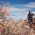 Riding Bar B in the MOAB Brand Mountain Bike Trails.- Utah's Best Fall Adventures