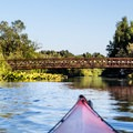 Paddling toward a footbridge in Mercer Slough State Park.- Adventure in the City: Seattle