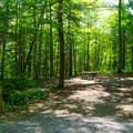 Paradox Lake: Campsite.- 10 Amazing Camping Spots in the Adirondacks