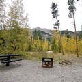 A campsite in Parry Peak Campground.- Guide to Camping in Colorado