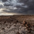 Dramatic monsoon clouds over the Jasper Forest in Petrified Forest National Park.- A Guide to Southwest Monsoon Safety