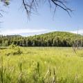 Pharaoh Mountain appears across Alder Pond.- Incredible Adirondack Hikes Below 4,000 Feet