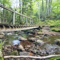 A quick descent to a bridge crossing at the start of the hike up Pillsbury Mountain.- Adirondack Fire Tower Hikes