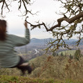 """Swing Hill"" on Mount Pisgah overlooks the Coast Fork of the Willamette River.- 10 Classic Hikes Near Eugene, Oregon"