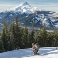 Dropping in off of Gunsight Ridge.- 12 Reasons to Visit Mount Hood in the Winter