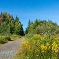 Pondicherry Rail Trail.- 20 Must-Do Hikes in New Hampshire