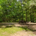 A campsite at Putnam Pond Campground.- 10 Amazing Camping Spots in the Adirondacks