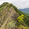 On each side of the skinny Pu'u Manamana Trail are craggy cliffs hundreds of feet tall.- Hawaii's Best Day Hikes