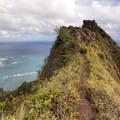 The Pu'u Manamana Trail.- October Hike Challenge with Team Sierra