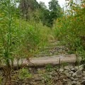 The trail runs along an old railroad bed for a short distance.- Finger Lakes Trail: Mitchellsville Gorge