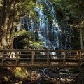 Ramona Falls Hike.- Oregon's 75 Best Day Hikes