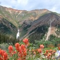 Indian paintbrush (Castilleja) on Redcloud Peak near the Colorado Trail.- Ralph Waldo Emerson: Nature and the Soul