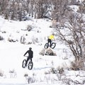 Snow fat biking in the Wasatch.- 12 Months of Adventure: January - Snowventures
