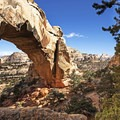 Hickman Natural Bridge at Capitol Reef National Park.- The Ultimate Utah National Parks Road Trip