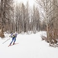 Cross-country skiing is functionally similar to hiking, and a great endurance sport to add variety to an off-season hiking program.- Hikers Training Without Hikes - Part I: Breaking Down the Science