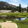 A swampy, marshy terrain that is typical in the Uintas. - Where to Hike In Utah's Uinta Mountains