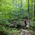 Enjoy the changing leaves from the saddle at Trout Brook Valley Preserve in southern Connecticut.- Ultimate Leaf-Peeping Road Trip through New England