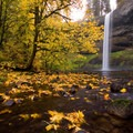 Lower South Falls before this massive oak tree fell, forever changing the scene.- Best Fall Hikes Near Portland