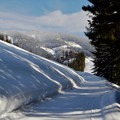 The terrain of Crystal Springs Sno-Park includes some downhill sections.- Winter Retreat at Snoqualmie Pass