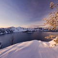 Late evening light on a small frozen tree overlooking the rim of Crater Lake.- Winter Road Trips to Top Your To-Do List