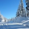 The Rim Road is not plowed in the winter, making it a perfect snowshoe or ski trail.- A Crater Lake Winter Overnight
