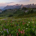 Full meadows and the Tatoosh Range from the Stevens Van Trump Memorial.- Skyline Trail Hike