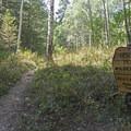 Now entering the Deseret Peak Wilderness.- Deseret Peak Wilderness