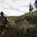 Sharing the trail with antelope along Specimen Ridge.- 6 Best Backpacking Trips in Yellowstone National Park