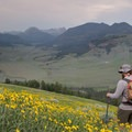 Beartooth Mountains seen from Specimen Ridge.- 15 Backcountry Hikes in Yellowstone National Park