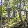 Discover protected ruins resting within a dense forest on the Lakeville Ironworks Trail.- 10 Great Outdoor Escapes In New York City, NY