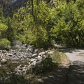 Picnic area along the stream at Storm Mountain Day Use Area.- 6 Days of Adventure in Utah's Wasatch Mountains