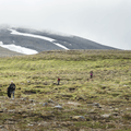 Many hikers along the path up Súlur.- Guide to Iceland's Ring Road