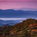 The colors are breathtaking from 441 in Great Smoky Mountains National Park.- Must-See National Parks in the Autumn