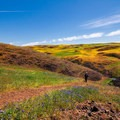 A beautiful walk through blooming fields of flowers.- A Guide to Fall Adventure in California
