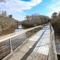 A bridge along the Tammany Trace, a trail for walkers and cyclists to go from the city to the forested interior of Southern Louisiana.- Adventurer's Guide to Southern Louisiana