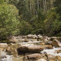 Little Cottonwood Creek. Tanners Flat Campground.- Guide to Camping Near Salt Lake City, Utah