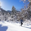 Fifteen minutes up the canyon from Salt Lake City and you have this!- 5 Safe and Easy Ways to Enjoy Winter in the Wasatch