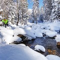 Snowshoeing Tanners Flat.- 20 Photos That Will Make You Excited for Winter