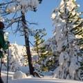 Nearing the summit ridge of Tom Dick and Harry Mountain.- 52 Week Adventure Challenge: Snowventure