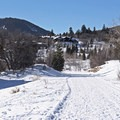 Hiking the North Basin Trails from Woods Trailhead in winter.- 5 Great Snowshoe Trails Near Salt Lake City