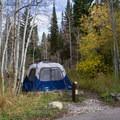 Typical campsite at Timpooneke Campground.- Adventuretown: Sundance, Utah