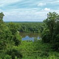 Discover the Apalachicola River from the trails at Torreya State Park in Florida.- East Coast State Parks that Will Blow Your Mind