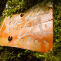 An old Train Wreck Trail sign on a tree.- 10 Reasons to Visit Whistler