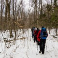 Hiking from the Little River Road to the North Twin Trail.- 8 Not-To-Be Missed White Mountain Adventures